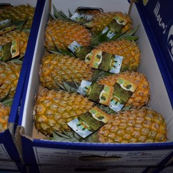 Victoria pineapple package